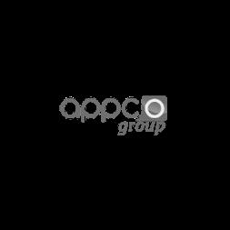 appco group - wise digital